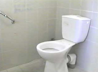 Common toilet