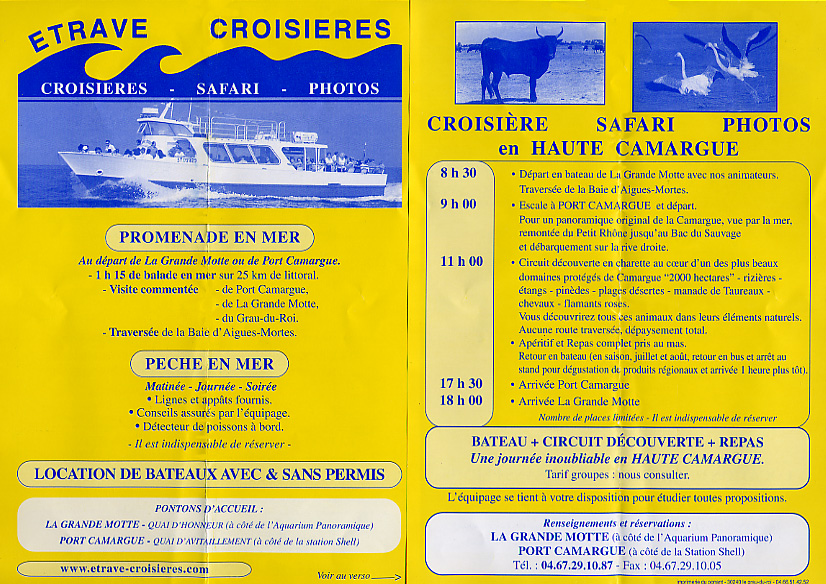 Cruise and safari advertisement brochure