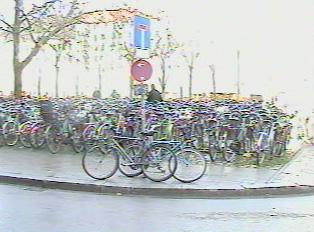 A popular bike parking spot