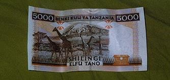 5000 Shilling bill back