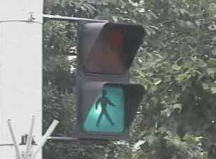 Green crosswalk light