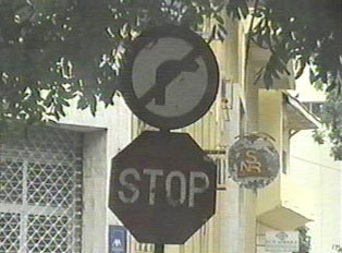 No right turn and stop signs